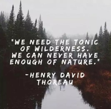 thoreau-quotes-about-nature